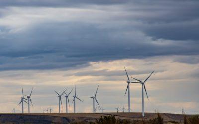 Windenergieindustrie-Gegner wählen Susanne Wiest und Jens Pörksen in neuen Vorstand
