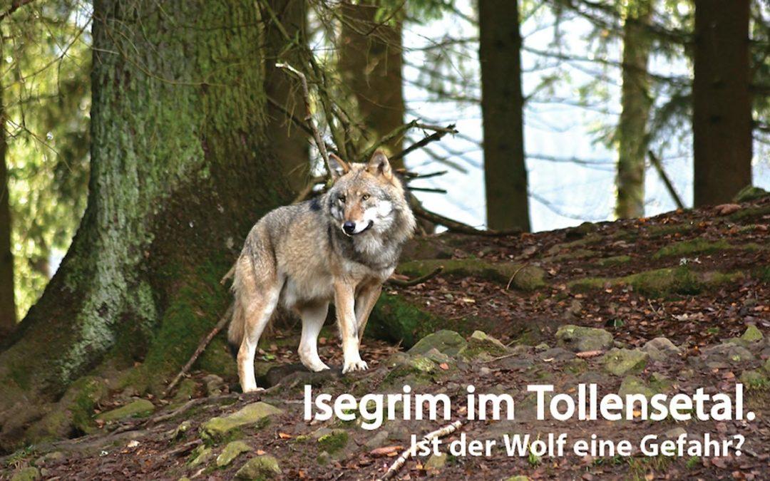 """""""Tollense-Dialoge – Ist der Wolf eine Gefahr?"""""""