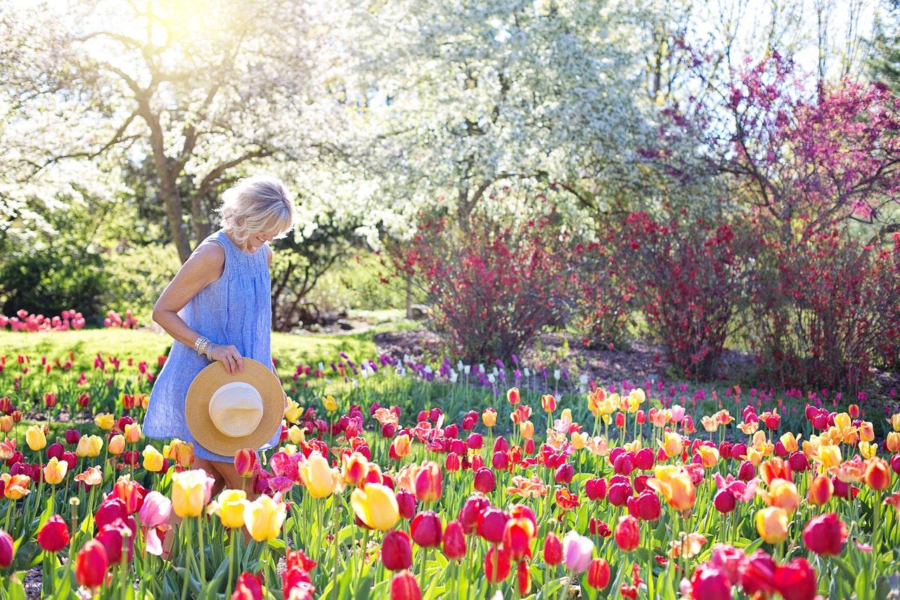 FAZ-Artikel zum Klimawandel im Garten